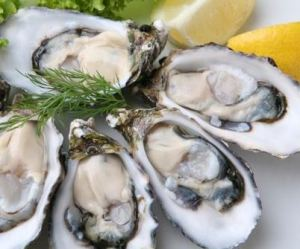oysters-increase-testosterone